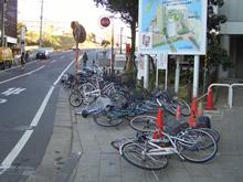 "bikes.jpg"""