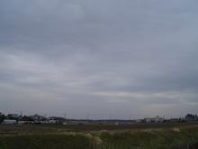見えない雲雀
